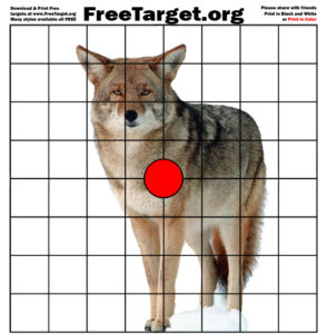 Coyote Red Dot 1 inch grid