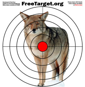Coyote Red Dot Bulls eye