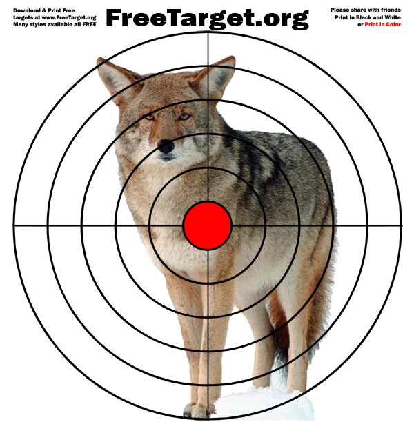 photograph about Printable Bullseye Target known as Coyote Purple Dot Bulls eye  - Absolutely free Printable